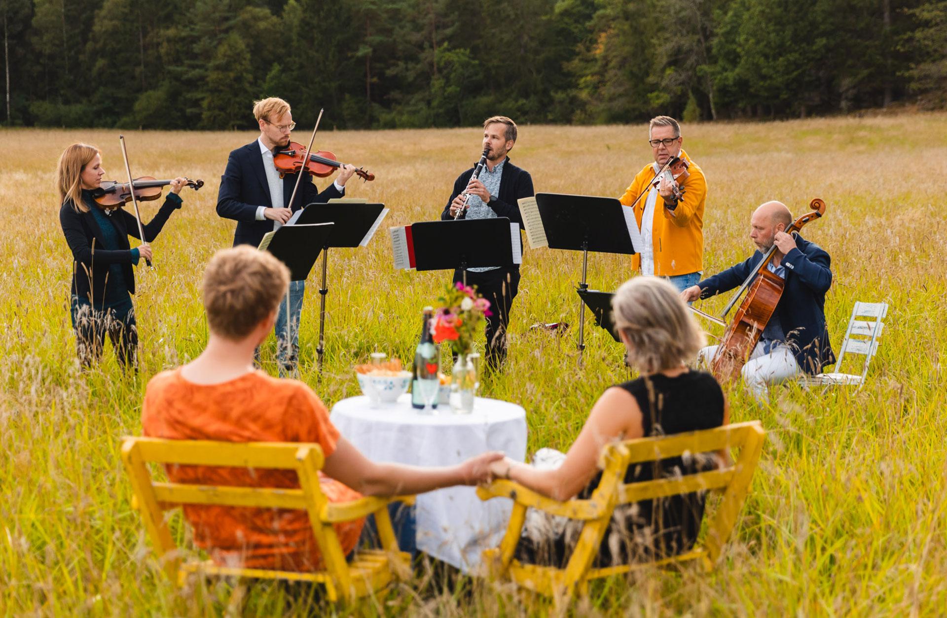 En stråkkvintett spelar i gröngräset framför två personer som sitter och lyssnar.